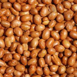 SOY NUTS ROASTED NO SALT